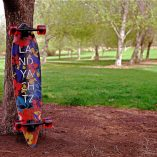 LANDYACHTZ MAPLE CHIEF FLORAL 36'' COMPLETE
